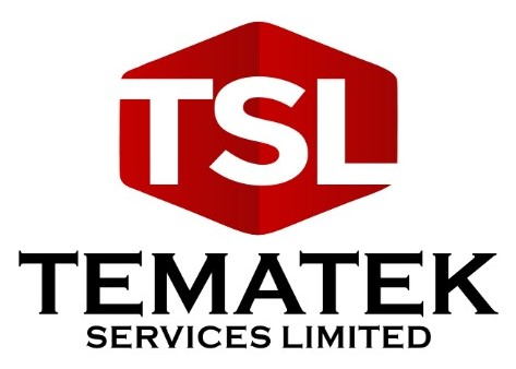 Tematek Services Limited